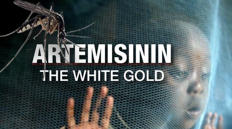 artemisinin kao lek