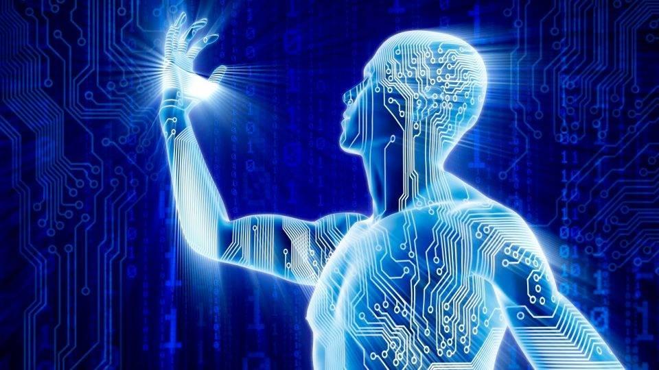 ljudsko telo energija