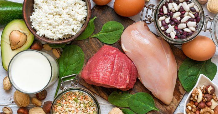 hrana proteini imuni sistem