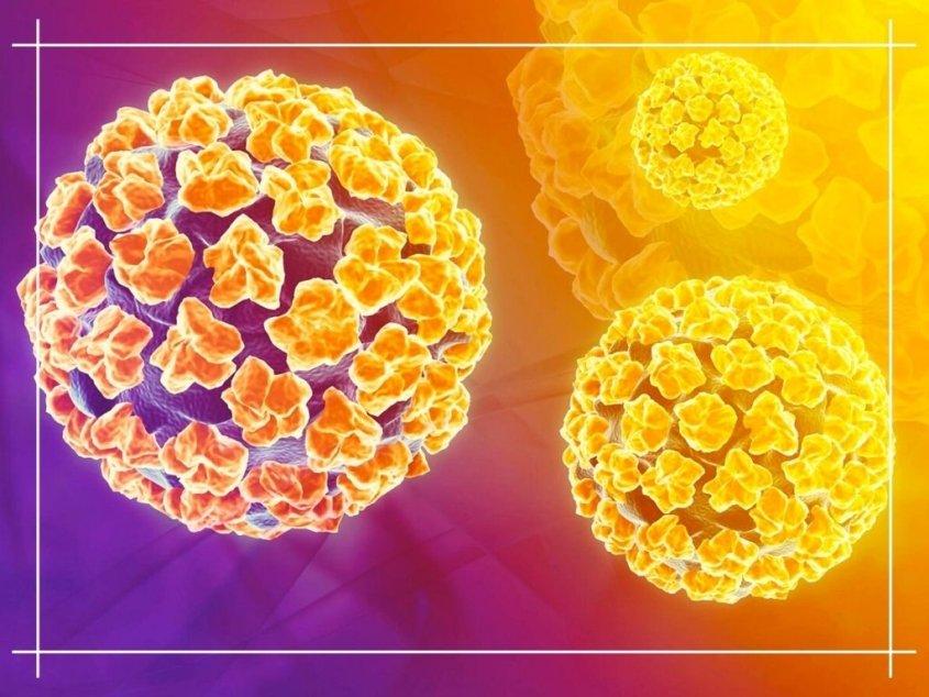 علاج فيروس الورم الحليمي البشري