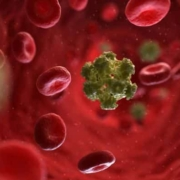 news about HPV treatment