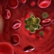 vesti o liječenju virusa HPV