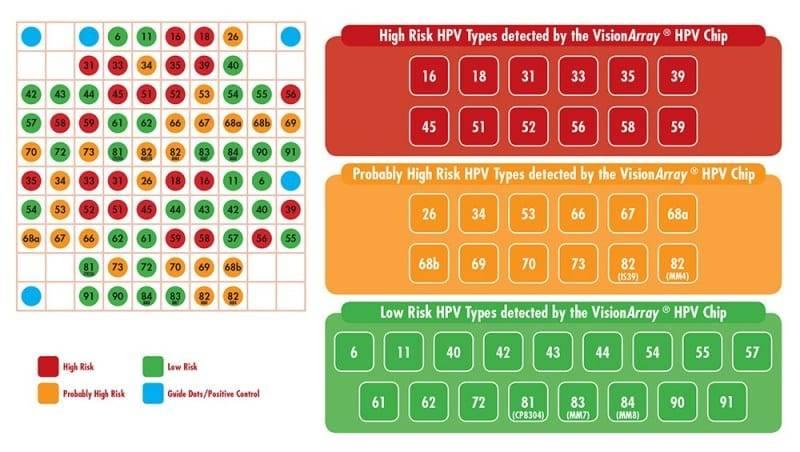 tipovi hpv virusa