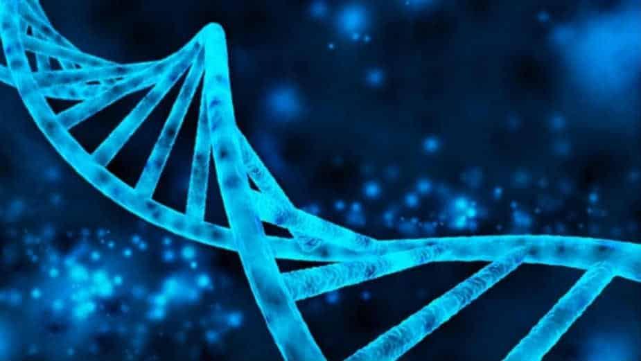 geni uzrok reumatoidnog artritisa