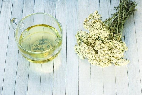 Ragweed und Öl