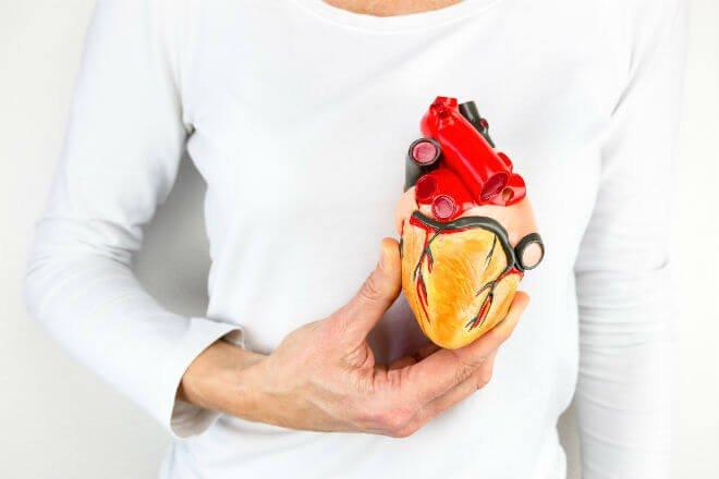 transplantacija srca