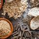 fiber essential for health