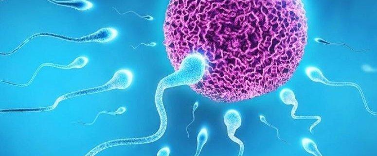 Simptomi Nakon Prvog Spolnog Odnosa - enfiana