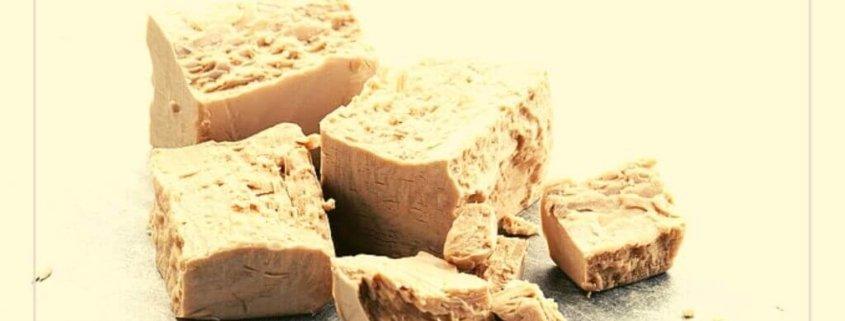 yeast beta glucan