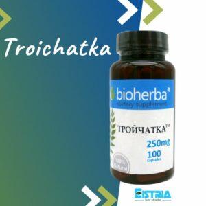 Troichatka