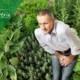 natürliche Heilmittel gegen Prostatakrebs